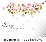sakura japan cherry branch with ... | Shutterstock .eps vector #1315576040