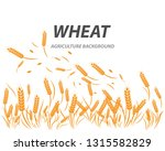 agriculture wheat background... | Shutterstock .eps vector #1315582829