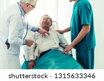 mature doctor talking and...   Shutterstock . vector #1315633346