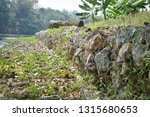 gabion   a metal wire cage... | Shutterstock . vector #1315680653