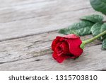 romantic background with one... | Shutterstock . vector #1315703810