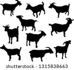 illustration with set of goats... | Shutterstock .eps vector #1315838663