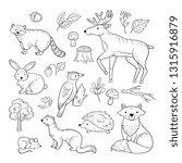 sketch forest animals. woodland ... | Shutterstock .eps vector #1315916879