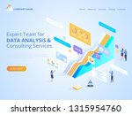 expert team for data analysis   ... | Shutterstock .eps vector #1315954760