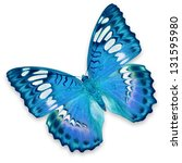 Stock photo blue butterfly isolated on white background 131595980