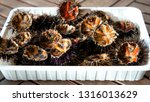 close up of fresh sea urchins | Shutterstock . vector #1316013629