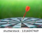 red dart arrow hitting in the... | Shutterstock . vector #1316047469