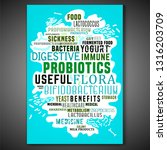 probiotics and prebiotics... | Shutterstock .eps vector #1316203709