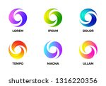 abstract swirl gradient circle. ... | Shutterstock .eps vector #1316220356