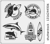 set of surfing emblems with... | Shutterstock .eps vector #1316244506