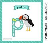 letter p lowercase cute...   Shutterstock .eps vector #1316332910