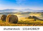 italy  tuscany  san quirico d... | Shutterstock . vector #1316428829