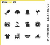 sunny icons set with t shirt ... | Shutterstock .eps vector #1316450729