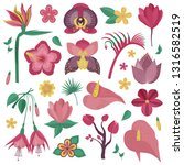tropical rainforest flower set. ... | Shutterstock .eps vector #1316582519