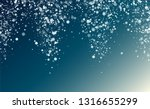 christmas snow flakes... | Shutterstock .eps vector #1316655299