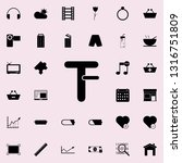 reduce the font icon. web icons ... | Shutterstock . vector #1316751809