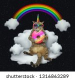 Stock photo the cat unicorn in sunglasses with a color donut is sitting on the cloud like a couch the rainbow 1316863289
