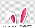 vector realistic isolated bunny ...   Shutterstock .eps vector #1316986076