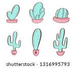 set of colorful succulents and... | Shutterstock .eps vector #1316995793