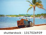 hotel staff cleaning up the...   Shutterstock . vector #1317026939