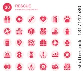 rescue icon set. collection of... | Shutterstock .eps vector #1317142580