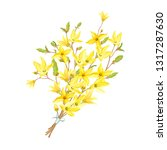delicate bouquet with...   Shutterstock .eps vector #1317287630