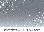 winter snowfall background....   Shutterstock .eps vector #1317315206