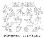 berries set of icons and... | Shutterstock .eps vector #1317452219