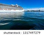 ms marina cruise ship...   Shutterstock . vector #1317497279