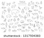 taiga biome  boreal snow forest ... | Shutterstock .eps vector #1317504383