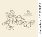 background with maqui berry ... | Shutterstock .eps vector #1317508196