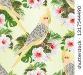 seamless texture  parrot yellow ... | Shutterstock .eps vector #1317544490