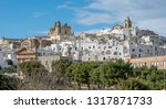 panorama of the picturesque old ... | Shutterstock . vector #1317871733