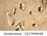 beautiful footprints in the... | Shutterstock . vector #1317949649