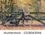 Dutch Electric Black Cargo...