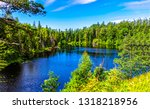 forest river landscape. river...   Shutterstock . vector #1318218956