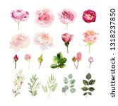 a collection of hand painted... | Shutterstock . vector #1318237850