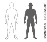 male human body silhouette and...   Shutterstock .eps vector #1318256009