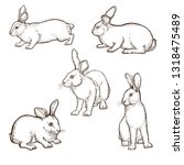 realistic image of a rabbit ... | Shutterstock .eps vector #1318475489