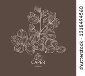 background with caper  caper... | Shutterstock .eps vector #1318494560