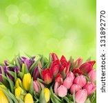 bouquet of multicolor tulips...   Shutterstock . vector #131892770