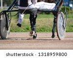 harness horse racing in details.... | Shutterstock . vector #1318959800