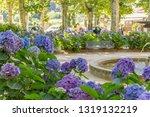 scenery around vals les bains ... | Shutterstock . vector #1319132219