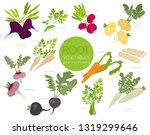 root vegetables raphanus ... | Shutterstock .eps vector #1319299646