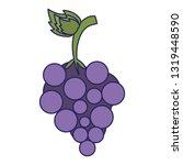 grapes fresh fruit isolated... | Shutterstock .eps vector #1319448590