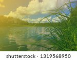 river landscape  sunny day | Shutterstock . vector #1319568950