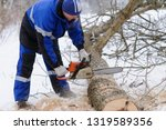 close up of woodcutter sawing... | Shutterstock . vector #1319589356