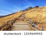ganwoljae hiking mountain... | Shutterstock . vector #1319644943