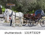 Traditional Horse Drawn Vehicle ...