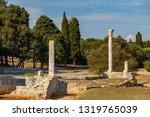 ruins of roman villa on brijuni ... | Shutterstock . vector #1319765039